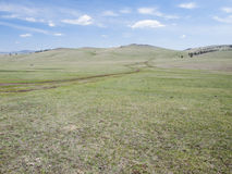 Vast plains of mongolian steppe Stock Image