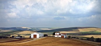 Big beautiful lonely fields and farm. Vast plains with small farm house white with red barn doors among crops Royalty Free Stock Photos