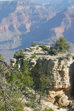 Vast and Scenic Grand Canyon National Park Stock Photography
