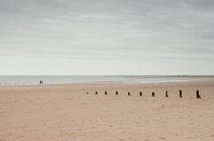 Vasta spiaggia ed orizzonte con i frangiflutti, Norfolk, Regno Unito Immagini Stock Libere da Diritti