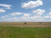 Vaste champ avec grands Hay Bales et nuages ronds ci-dessus image libre de droits