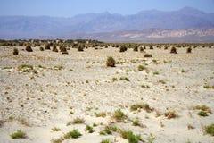 Vaste désert Photo libre de droits