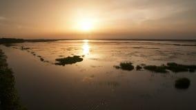 Vastes marécages pendant le coucher du soleil clips vidéos