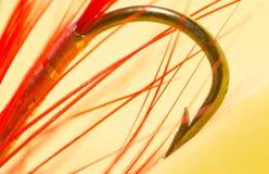 Vastgehaakt bij vlieg de visserij sluit stock foto