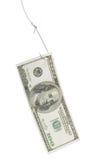 Vastgehaakte dollar Stock Foto