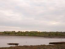 Vastgelegde boten en jachten at low tide op Wivenhoe-Estuarium in Essex royalty-vrije stock foto's