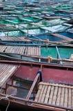 Vastgelegde het Roeien Boten in Tam Coc stock fotografie