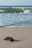 Vastgelopen zonnebril op het strand Stock Foto's