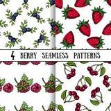 Vastgesteld Berry Patterns Stock Afbeelding