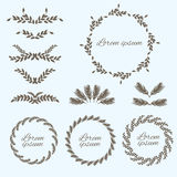 Vastgesteld bloemornament De elementen van het ontwerp Vector Vector Illustratie