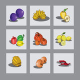 Vastgesteld fruit Stock Afbeeldingen