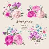 Vastgesteld uitstekend bloemen vectorboeket van pioenen stock illustratie