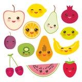Vastgestelde aardbei, sinaasappel, banaankers, kalk, citroen, kiwi, pruimen, appelen, watermeloen, granaatappel, papaja, peer, pe Royalty-vrije Stock Afbeeldingen