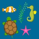 Vastgestelde aquatische grappige van overzeese shell van het beeldverhaalkarakters dieren onderwaterschepselen aquarium sealife v vector illustratie