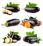 Vastgestelde aubergine plantaardige vruchten die op wit worden geïsoleerd stock afbeeldingen