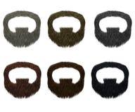 Vastgestelde baard en snor verschillende kleuren het varkenskot van de manierschoonheid Stock Afbeeldingen