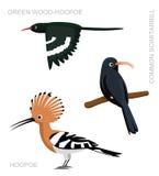 Vastgestelde het Beeldverhaal Vectorillustratie van vogelhoopoe Stock Fotografie