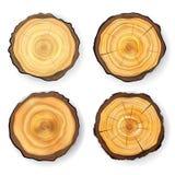 Vastgestelde Houten de Stompvector van de dwarsdoorsnedeboom Geïsoleerde cirkelstextuur Boomronde die met Jaarringen wordt gesned vector illustratie