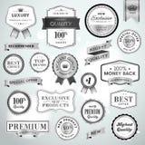 Vastgestelde luxe zilveren etiketten en linten Royalty-vrije Stock Afbeeldingen