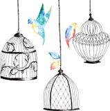 Vastgestelde met de hand geschilderde birdcages, vogels, bladeren, waterverfregenboog royalty-vrije illustratie
