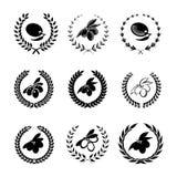 Vastgestelde olijfolieetiketten, emblemen en ontwerpelementen Stock Fotografie
