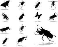 Vastgestelde pictogrammen - 55. Insecten Royalty-vrije Stock Foto's