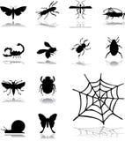 Vastgestelde pictogrammen - 160. Insecten Stock Afbeeldingen