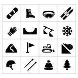 Vastgestelde pictogrammen van het ski?en en het snowboarding Royalty-vrije Stock Fotografie