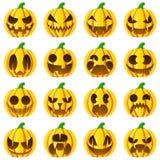 Vastgestelde pompoenen voor Halloween Royalty-vrije Stock Afbeelding