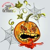 Vastgestelde pompoenen voor Halloween stock illustratie