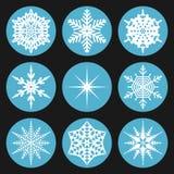 Vastgestelde sneeuwvlok in cirkel Vector Illustratie