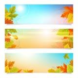 Vastgestelde van de bedrijfs herfstbanners achtergrond Royalty-vrije Stock Fotografie