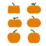Vastgestelde verschillende pompoenen Groenten voor Halloween Stock Foto's