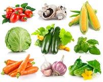 Vastgestelde verse groenten met groene bladeren royalty-vrije stock foto