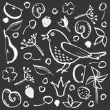 Vastgestelde vogel en bes royalty-vrije illustratie