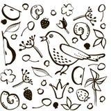 Vastgestelde vogel en bes stock illustratie