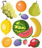 Vastgestelde vruchten Royalty-vrije Stock Afbeelding