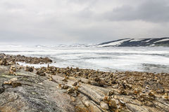 Vastness of the arctic landscape. At uninhabited areas in Norway Stock Photography