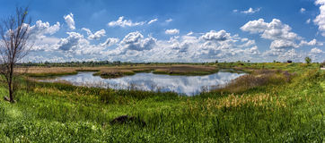The vastness of the Russian steppe of mother earth Royalty Free Stock Photos