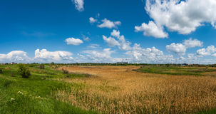 The vastness of the Russian steppe of mother earth Stock Photography