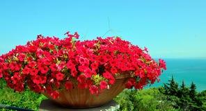 Vasto Chieti Italy Stock Images