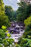 Vasto fiume fotografia stock