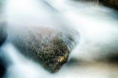 Vasto fiume che attraversa foresta boscosa fotografia stock