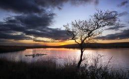Vasto stagno Gower del nord fotografia stock libera da diritti