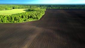 Vasto terreno arabile marrone di vista superiore dalla foresta verde video d archivio