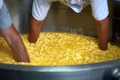 Vat of cheese curds and whey stock photos