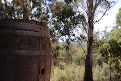 Vat in het Bos stock fotografie