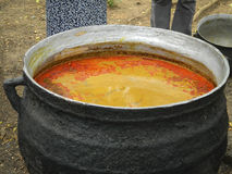 Vat of palm oil Stock Images
