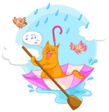 Vat in the rain. Cat sailing in an umbrella and singing in the rain Royalty Free Stock Image