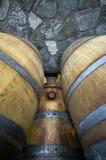 Vaten met rode wijnstok Royalty-vrije Stock Fotografie